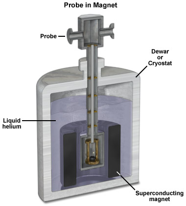 Diagram of a probe inside the magnet