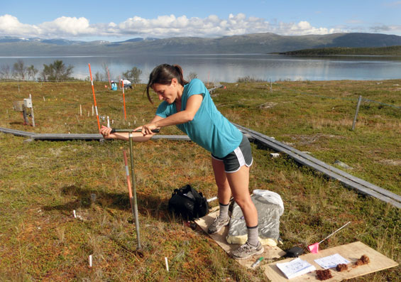Anna Normand collects soil samples in Sweden.