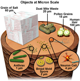 objects at micron scale