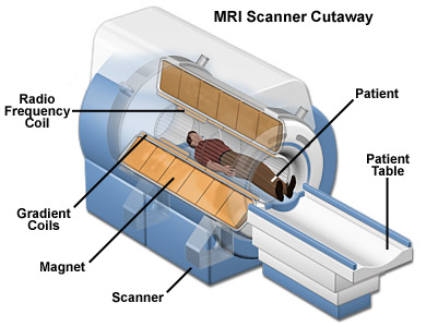 Image result for images of MRI