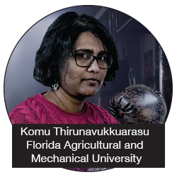 Komu Thirunavukkuarasu - Florida Agricultural and Mechanical University