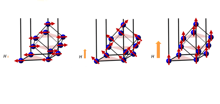An illustration of the step-wise metamagnetic transition of a new quantum material discovered in the lab of Rice physicist Emilia Morosan.