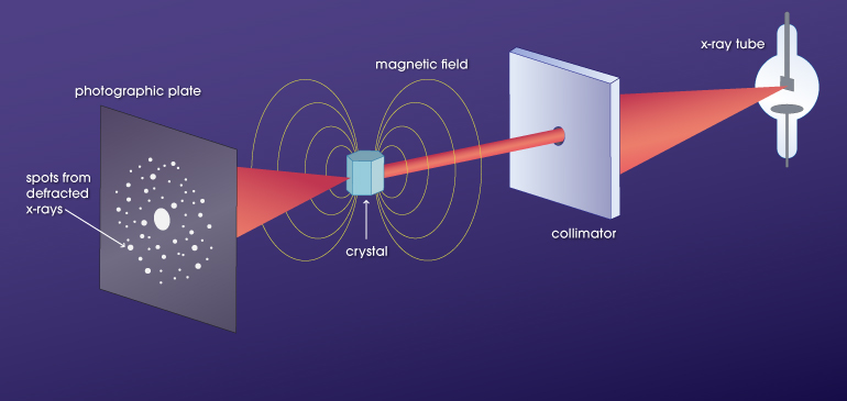Illustration of x-rays in magnetic fields by Caroline McNiel