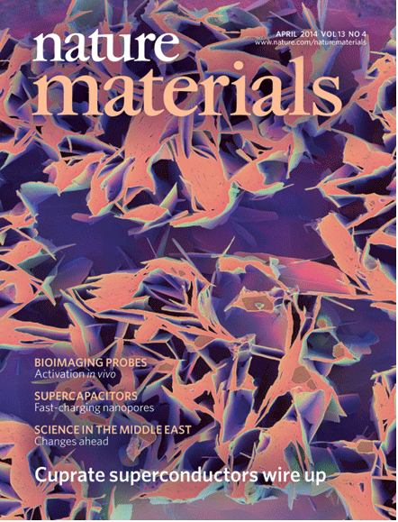 A higher magnification image was used for the cover of Nature Materials