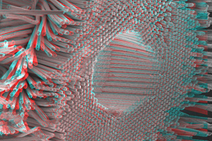 Nb-Ti: 3d (blue-green anaglyph) deep-etch cross section of Nb-Ti strand