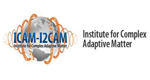 Institute for Complex Adaptive Matter logo