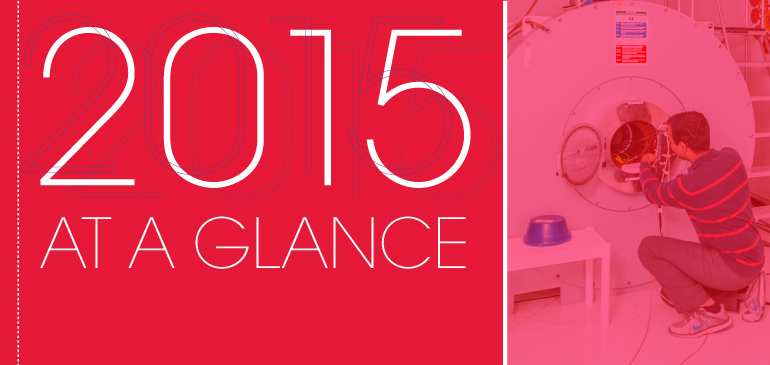 2015 At a Glance - MagLab Annual Report