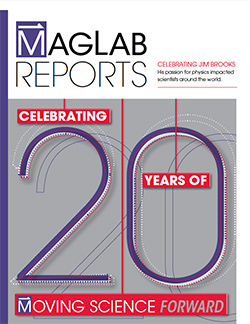 2014 MagLab Reports cover