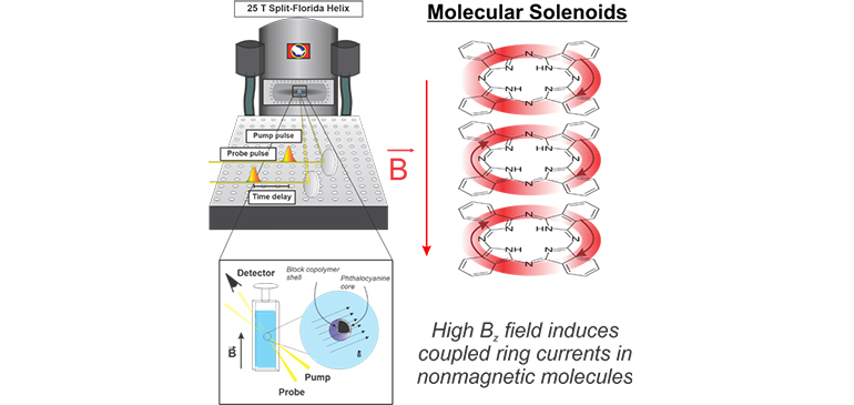 High magnetic fields induce circular electronic motion (ring currents) around the chemical bond loops in non-magnetic aromatic molecules.
