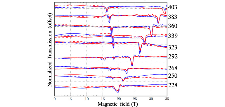 Normalized transmission through a BiFeO3 crystal with the magnetic field.
