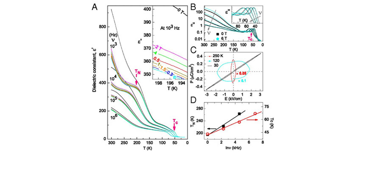 Temperature dependence of the dielectric susceptibility for PbCrO3 at different frequencies