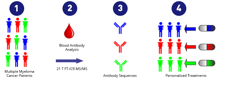Multiple Myeloma Precision Diagnosis treatment Diagram