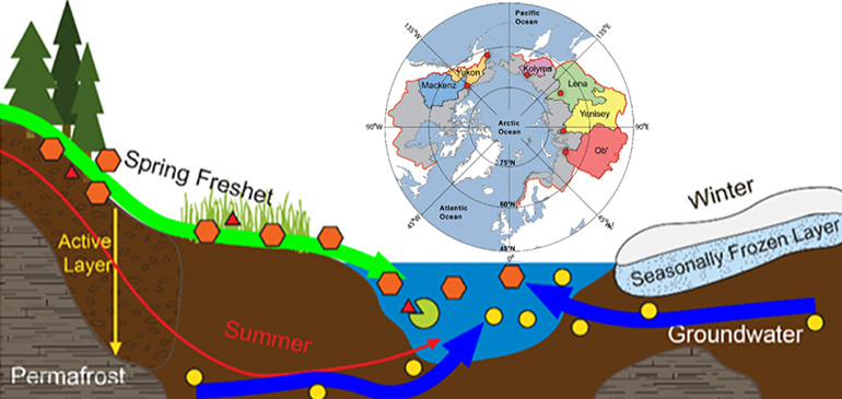 Map of the drainage basins of six Arctic rivers, with water sampling points shown in red.