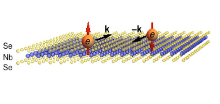 Cooper pairs in a monolayer of niobium diselenide