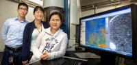 FSU Assistant Professor of Physics Hanwei Gao, National MagLab researcher Yan Xin and FSU graduate student Xi Wang worked with a transmission electron microscope to conduct research on halide perovskites.