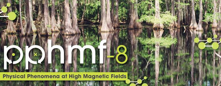 The PPHMF conference brings together experts to discuss advances in science and technology in which high magnetic fields play, or could play, an important role.