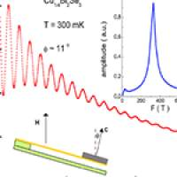 Quantum oscillations in the sample magnetization