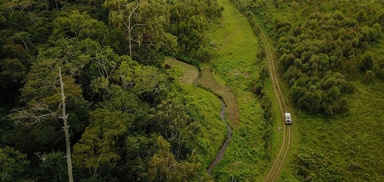 Florida State researchers working in the Democratic Republic of the Congo found a link between the churning of deep soils during deforestation and the release of carbon dioxide through streams and rivers.