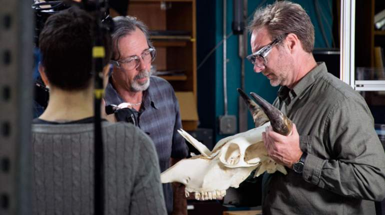 MagLab mechanical engineer Bob Walsh (left) and FSU professor Greg Erickson examine a cow skull damaged in the MTS machine.