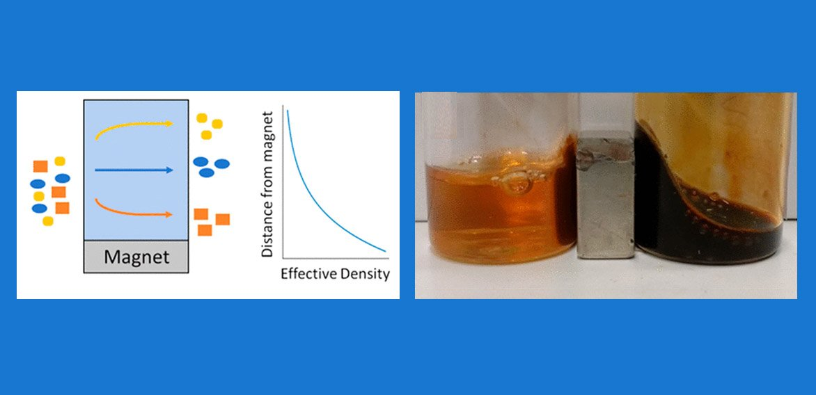 Left: In magnetic density separation, a magnet magnetizes a magnetic fluid and produces a field gradient, resulting in an effective density gradient used to separate plastics of different densities. Right: A powerful neodymium magnet sits between two different ferrofluid solutions. The solution on the right remained stable in the magnetic field. In the solution on the left, however, the iron oxide particles clumped together where the field was strongest.
