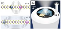 (a) 2D excitons in monolayer tungsten di-selenide, (WSe2) (b) The experiment: monolayer WSe2 is affixed to an optical fiber and encapsulated.